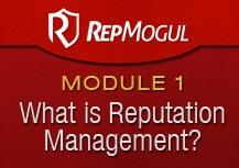 Rep Mogul Review - Mod1
